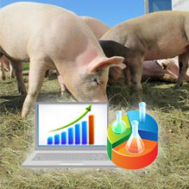 Bilansowanie i optymalizacja – sposób na obniżenie kosztów żywienia zwierząt